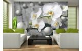 Fotobehang Bloem, Orchidee | Grijs | 208x146cm