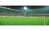 Fotobehang Voetbalstadion | Groen | 250x104cm