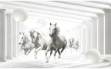 Fotobehang Paarden, Modern | Wit | 104x70,5cm
