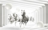 Fotobehang Papier Paarden, Modern | Wit | 368x254cm