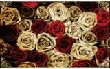 Fotobehang Papier Rozen | Crème, Rood | 368x254cm