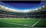 Fotobehang Voetbalveld | Blauw, Groen | 104x70,5cm