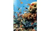 Fotobehang Papier Natuur   Blauw   184x254cm