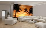 Fotobehang Papier Tropisch | Oranje, Zwart | 254x184cm