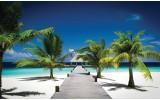 Fotobehang Tropisch | Blauw, Groen | 312x219cm