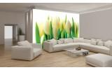 Fotobehang Bloemen | Groen | 208x146cm